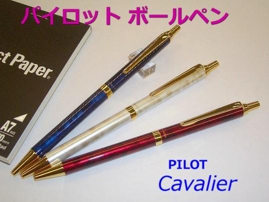 ボールペン プレゼント 3000円